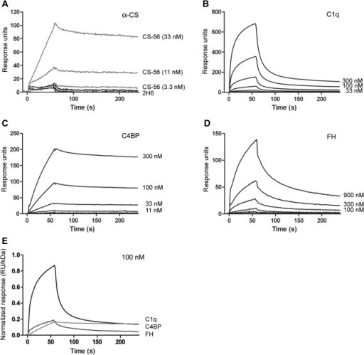 Surface Plasmon Resonance (SPR) Analysis Of Complement