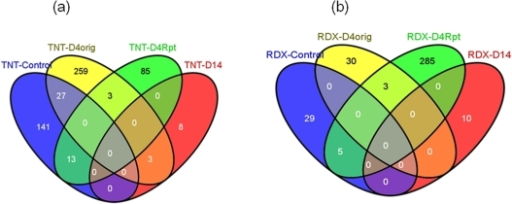 The number and overlapping of significant genes statistically inferred from class comparisons for (a) TNT and (b) RDX treatments.TNT/RDX-Control: two-class comparison between pooled controls and pooled TNT/RDX treatments; TNT/RDX-D4orig: multiple-class comparison of 4-day TNT/RDX treatments including the control group; TNT/RDX-D4Rpt: multiple-class comparison of 4-day repeat TNT/RDX treatments including the control group; TNT/RDX-D14: multiple-class comparison of 14-day TNT/RDX treatments including the control group (also see Materials and Methods).