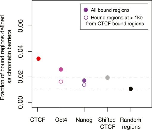 Colocalization of TFs with Chromatin Barriers, Related to Figure 5The fractions of regions bound by CTCF in mouse liver as well as Oct4 and Nanog in mouse ESCs (Marson et al., 2008) that are found to be at mouse liver H2AK5ac domain boundaries are shown. Open circles indicate Oct4 and Nanog binding events that are more than 1 kb away from a CTCF-binding event. As random controls we shifted CTCF binding randomly (Shifted CTCF) and selected a set of random genomic regions (Random regions).
