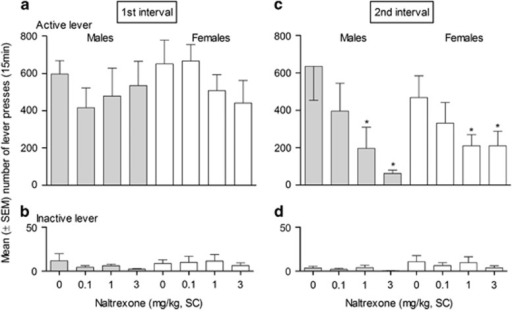 Effect of naltrexone (NTX) on food seeking. Effects of NTX on food-seeking under a second-order schedule of reinforcement during the first food-free interval (a, b) and after food delivery (second interval) (c, d) in male (n=6, gray bars) and in female (n=6, white bars) rats. Data shown are mean (±SEM) number of presses on the active (a, c) and inactive lever (b, d). *p<0.05 compared with vehicle-treated animals.