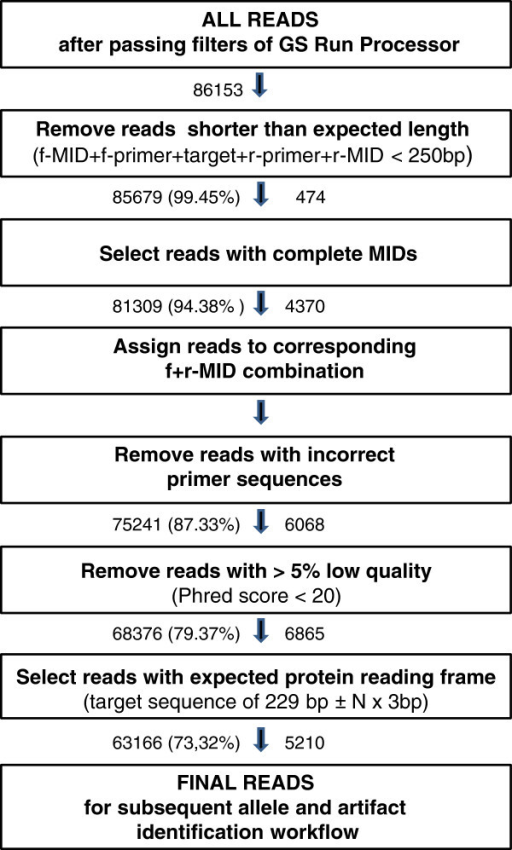 454 reads filtering: pyrosequencing data quality assessment. Pathway illustrating initial filtering steps to ensure data quality of reads obtained by 454 pyrosequencing and to facilitate the subsequent allele and artefact identification workflow. The number of reads included in a filtering step is indicated on the left of each arrow and the percentage of the initial number of reads in brackets. The number of discarded reads is shown on the right of each arrow.