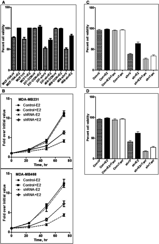 Effect of SHP2 silencing on estrogen responsiveness. A) Comparison of cells for responsiveness to estradiol treatment using cell viability assay. B) Effect of estradiol on the growth of the control and the SHP2-silenced MDA-MB231 and MDA-MB468 cells as determined by direct cell counting in a time-course fashion. C) Effect of SHP2 silencing on sensitivity to tamoxifen in the MDA-MB231 cells. D) Effect on SHP2 silencing on sensitivity to tamoxifen in the MDA-MB468 cells. V: vehicle; E2: estradiol; Tam: tamoxifen; Con: control shRNA; sh: SHP2 shRNA.