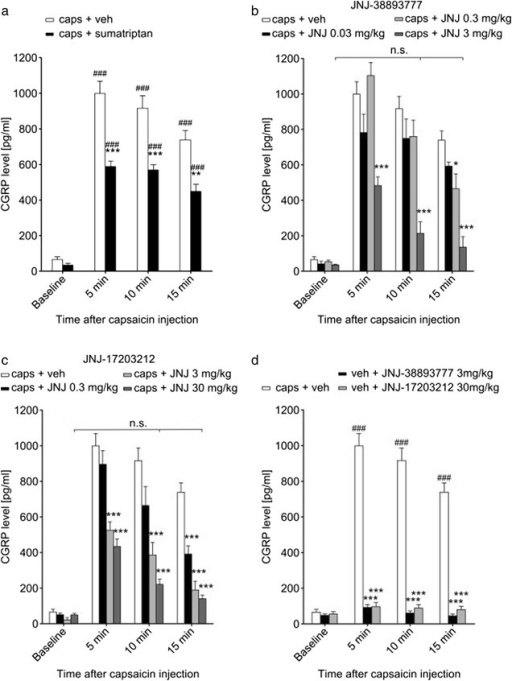 TRPV1 antagonists are effective in blocking capsaicin-induced CGRP release. a Injection of capsaicin (4 μmol/kg) into the carotid artery caused an increase in CGRP concentration in jugular vein blood. The increase was substantial within 5 min and still significant albeit slightly decreasing after 15 min. Administration of sumatriptan (300 μg/kg; black bars) prior to capsaicin treatment reduced the elevated CGRP levels significantly, although they were still considerably higher than baseline values. b The TRPV1 antagonist JNJ-38893777 in the highest dose of 3 mg/kg (dark grey bars) reduced jugular CGRP levels after capsaicin significantly, returning them to near baseline levels within 10 min. Lower doses of 0.3 mg/kg (light grey bars) and 0.03 mg/kg (black bars) were less effective. c JNJ-17203212 had a dose-dependent effect on the capsaicin-induced increase in jugular CGRP concentration. CGRP release was completely abolished within 10 min when the antagonist was administered at 30 mg/kg (dark grey bars) and within 15 min when administered at 3 mg/kg (light grey bars). The lowest dose of 0.3 mg/kg (black bars) reduced the CGRP levels significantly but not to the level of the pre-capsaicin baseline after 15 min. d Neither JNJ-38893777 (black bars) nor JNJ-17203212 (grey bars) when used in their highest doses had any effect on jugular CGRP levels in animals that did not receive an injection of capsaicin. Values were not significantly different compared to the respective baseline. # compares to baseline values of the same group. * compares to capsaicin + vehicle at the same time point. n.s. not significant (compared to baseline values of the same group). *p < 0.05; **p < 0.01; ***p < 0.001