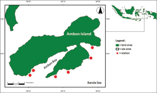 Map of Ambon Island showing location of stations, from left to right: Airlouw, Mahia, Hutumuri, Suli, Lilibooi, Alang; see Table 1 for co-ordinates and collection times.