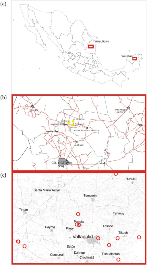 Geographic location.(a) Map of Mexico showing the two sampling sites. (b) Sampling sites (filled circles) in Padilla, Tamaulipas, Mexico. (c) Sampling sites (red circles) in Yucatan, Mexico.