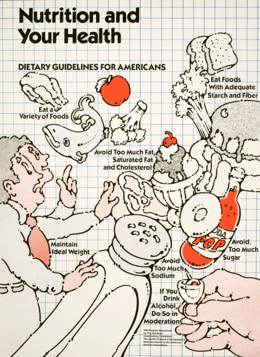 <p>Seven illustrated suggestions for healthy eating.  Illustrations include chicken, fish, apple, broccoli, bread, cake, ice cream, soda pop, a very large salt shaker, and a glass with a tooth pick and olive.  Two identical looking men with raised arms are on the side looking at the variety of food.</p>
