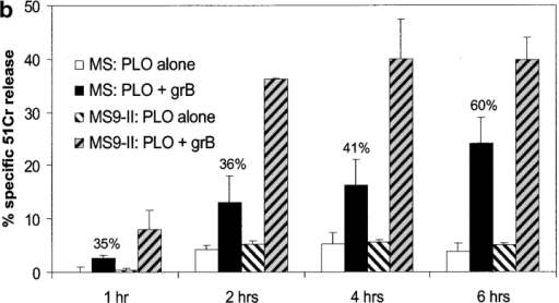 MPR- L cells are not protected from granzyme B–induced cell death. (a) Clonogenic survival of MS and MS9-II cells after incubation with sublytic pneumolysin (PLO) alone or with various concentrations of granzyme B at 37°C for 90 min. Results are shown as the percentage inhibition of colony growth (mean of three cultures ± standard error at each granzyme concentration) compared with untreated cells. Typically, 75–150 L cell colonies grew when the cells were untreated. The experiment shown is representative of four similar experiments (as described in Materials and methods). (b) 51Cr-labeled MS or MS9-II cells were incubated with sublytic pneumolysin (PLO) alone or together with granzyme B (50 nM) at 37°C for the times indicated. Specific 51Cr release is shown as the mean of triplicate data points ± standard error. The assay is representative of three similar experiments.