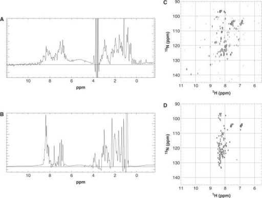 Biophysical analysis of selected soluble domains. 1D proton NMR spectra of Fli1 10 (A) fragment and Pecam1 84 fragment. (B) 2D 15N-HSQC spectra results of Fli1 10 (C) fragment and Pecam1 84 fragment (D).