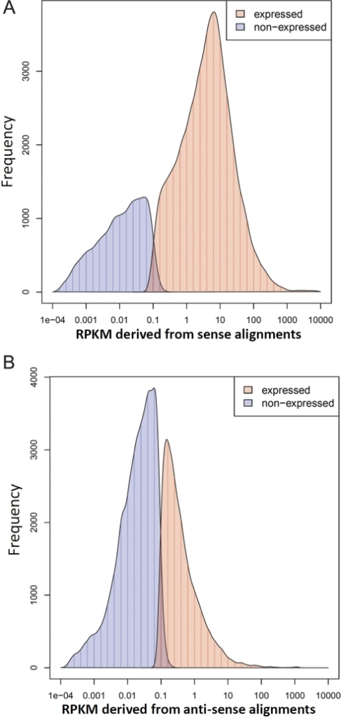 Distribution of reads mapping to expressed and non-expressed genes.(a) Distribution of sense alignments and (b) anti-sense alignments. The RPKM values were calculated from three replicates. The frequency shows the number of gene models per bin (vertical bars). A smoothed curve is plotted. Genes with average RPKM equal to zero are not shown in the histograms.