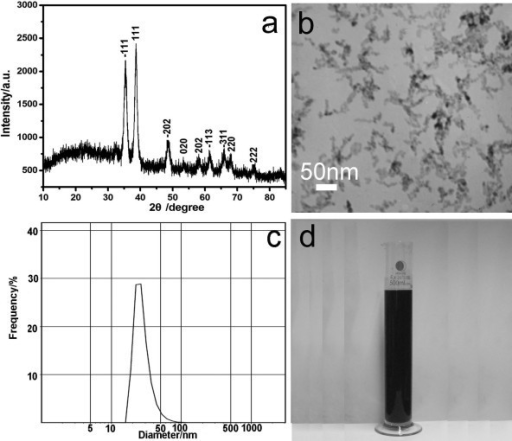 Characterization of the typical sample. (a) XRD pattern; (b) TEM image; (c) size distribution; (d) real photo.