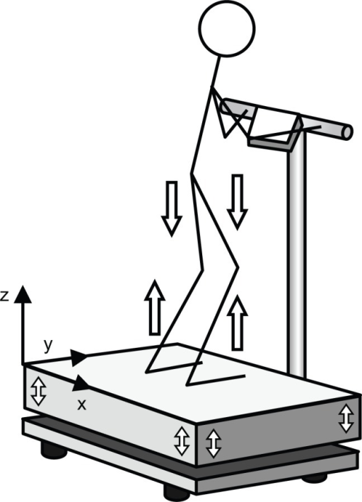 Illustration of the synchronous mode of vibration transmission in whole-body vibration exercise. Both legs extend and stretch at the same time, and a purely linear acceleration is directed to the trunk.