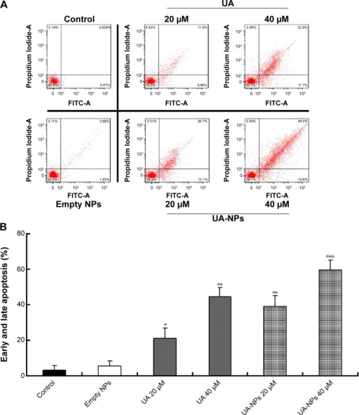 Apoptotic induction in H22 cells treated with equivalent doses of UA or UA-NPs.Notes: (A) Flow cytometry-based annexin V-FITC/PI labeling of apoptotic cells. (B) The histogram represents apoptosis rates. #P<0.01 versus control group. *P<0.01 versus the group exposed to UA 20 μM. **P<0.01 versus the group exposed to UA 40 μM. Data are presented as mean ± SD (n=3).Abbreviations: FITC, fluorescein isothiocyanate; PI, propidium iodide; SD, standard deviation; NP, nanoparticle; UA, ursolic acid; UA-NPs, UA-loaded poly(N-vinylpyrrolidone)-block-poly (ε-caprolactone) nanoparticles; A, annexin.