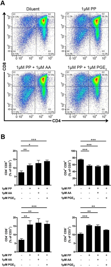 The unspecific effect of PP on thymocyte maturation is not reversed by exogenous AA and PGE2.A. Representative thymocyte subpopulation distribution in WT cPLA2α FTOC after 5 days of culture in absence or presence of 1μM of PP and exogenous (1μM) AA and PGE2. Thymocytes were identified cytofluorometrically using fluorochrome-conjugated antibodies directed against CD3, CD4 and CD8. B. WT cPLA2α fetal thymuses were cultured during 5 days as FTOCs in absence or presence of 1μM of PP, and exogenous (1μM) AA and PGE2. After mechanical dissociation of fetal thymuses, the thymocytes were identified with fluorochrome-conjugated antibodies directed against CD3, CD4, and CD8 and analyzed by flow cytometry. Data are mean ± SEM of 3 independent experiments and the number of fetal thymuses for each condition is: Diluent (n = 5); 1μM PP (n = 6); 1μM PP and 1μM AA (n = 5); 1μM PP and 1μM PGE2 (n = 5). * P< .05; ** P< .01; *** P< .001.