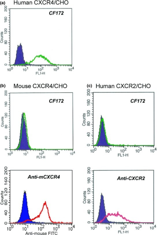 Reaction specificity of CF172 against human CXC chemokine receptor-4 (CXCR4). The binding activity of CF172 to CHO cells stably expressing (a) human CXCR4, (b) mouse CXCR4, and (c) human CXCR2, was measured by flow cytometry. Background binding, measured with isotype control (solid area), is also shown.
