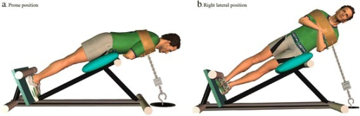 a. Prone position and b. Right lateral position. These positions were used to assess the endurance and the MVC of trunk muscles
