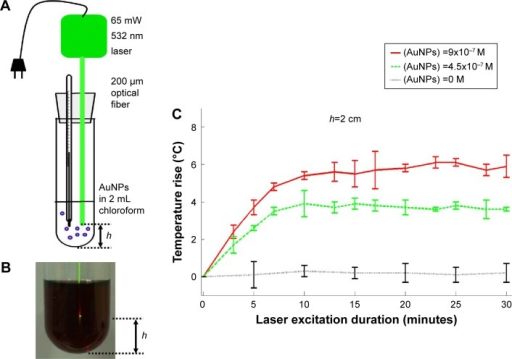 Photo-thermal energy conversion by AuNPs in chloroform.Notes: (A) Illustration of apparatus. (B) Appearance of collimated laser beam exiting optical fiber and illuminating into dark-reddish AuNP solution in chloroform. (C) AuNPs concentration and excitation duration dependent photo-thermal conversion profiles with fixed light path (h=2 cm). Data of (C) represent mean ± standard deviation (n=3).Abbreviation: AuNP, gold nanoparticle.