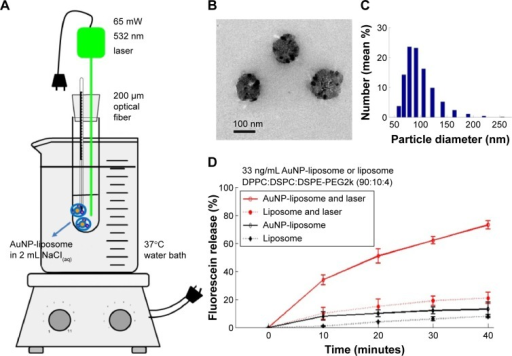 Fiber-optic guided laser excitation triggered photo-thermal responsive liposomes release in vitro.Notes: (A) Illustration of apparatus. (B) Appearance of AuNP-liposome observed by transmission electron microscopy. (C) Particle size distribution of AuNP-liposome detected by dynamic laser scattering. (D) Contribution of AuNPs in photo-thermal responsive release of liposome. Data of (D) represent mean ± standard deviation (n=3).Abbreviations: AuNP, gold nanoparticle; DPPC, 1,2-dipalmitoyl-sn-glycero-3-phosphatidylcholine; DSPC, 1,2-distearoyl-sn-glycero-3-phosphatidylcholine; DSPE-PEG2k, 1,2-distearoyl-sn-glycero-3-phosphoethanolamine-N-[methoxy (polyethylene glycol)-2000].