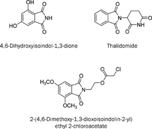 The chemical structures of 4,6-dihydroxyisoindol-1,3-dione, thalidomide and QSN-10c.