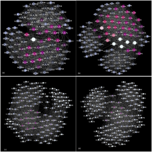 Speaker-related communities occurring in multi-brain network.Two communities dominated by frontal and parietal lobe locations are shown as separate graphs in stimulus1, (a) and (b), and in stimulus11 (c), and (d).