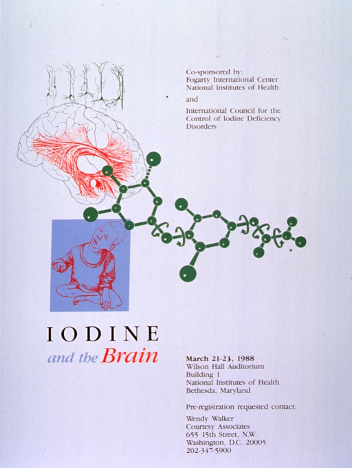 <p>White poster with multicolor lettering announcing symposium, Mar. 1988.   Also lists sponsors, dates, location, and registration information.  Three-part image from top left to center right: green line drawing appearing to be nerves above black and white drawing of brain that shows centrally located looping red lines suggestive of a pathway, green drawing of molecular structure starts at front of brain, extends near right edge of poster.  Light blue rectangle with red line drawing of a seated child appears under image of brain.  Title appears under image of child.</p>