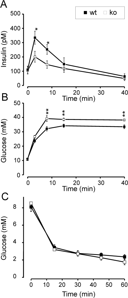 In vivo measurements of insulin secretion, glucose tolerance and insulin sensitivity.Time course of (A) plasma insulin concentration (pM), and (B) plasma glucose (mM) in response to i.p. glucose injection (3 g/kg) at time 0; wt (black squares, n = 12) and CgB-ko (white squares, n = 16). (C) plasma glucose (mM) in response to i.p. insulin injection (0.8U/kg). **P<0.01;*P<0.05.