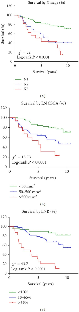 The Kaplan-Meier survival analysis of node-positive patients (n = 107) according to N stage, LN CSCA, and LNR.