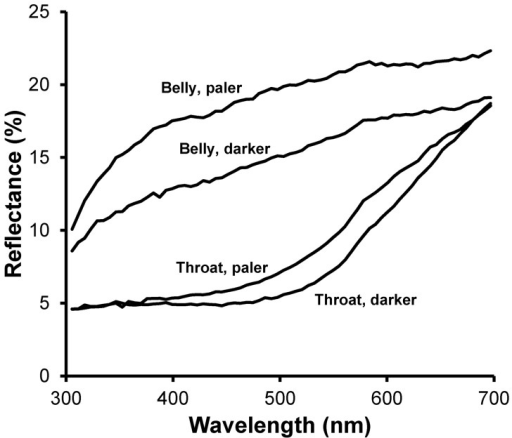 Reflectance spectra of belly or throat feathers with relative pale or dark color.