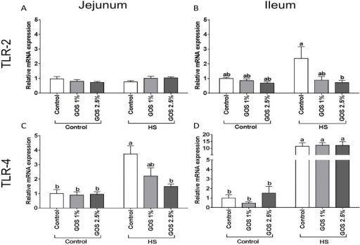 The effect of heat stress exposure on the mRNA expression of TLR-2 and TLR-4 in jejunum and ileum of chickens fed a control or GOS diet.Chickens fed a control or GOS (1 or 2.5%) diet for 6 days before being exposed to either control or heat stress conditions for 5 days. mRNA expression of TLR-2 (A, B) and TLR-4 (C, D) in jejunum (A, C) and ileum (B, D) were evaluated by qRT-PCR. Results are presented as relative mRNA expression (fold of control, normalized to β-actin) as mean ± SEM, n = 6–10 animals/experimental group. Different lower-case letters denote significant differences among groups.