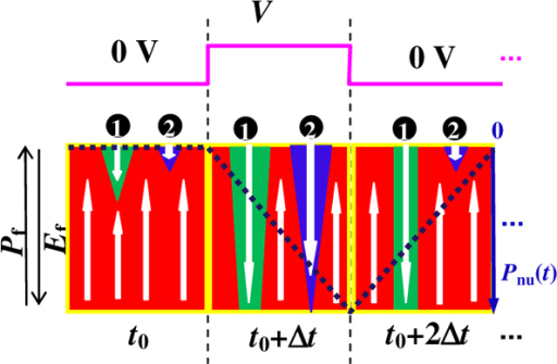 As the source voltage was increased from 0 V to V across the pre-poled capacitor with an Ef that was antiparallel to Pf at t0, the two reverse domain nuclei 1 and 2 that stemmed from the interface began to grow at t0 + Δt.As the voltage dropped back to 0 V at t0 + 2Δt, the non-penetrating Domain 2 within the film thickness contracted to its previous state, in contrast to the irreversibly penetrated Domain 1. The Domain 2 motion after t0 + 2Δt reversibly followed the external AC pulse field and generated the polarization Pnu shown by the thick dotted line.