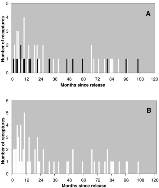 a and b Frequency histograms for number of months between date released and recapture event. The frequency distribution of time in months since the date of release for sterilised females that were caught a second time. In figure 3a white bars show the distribution for females caught a second time as a result of the ear notch having been missed, superimposed black bars show the distribution for females caught a second time because of terminal illness or injury. In figure 3b this data has been combined into one dataset as shown by the white bars.