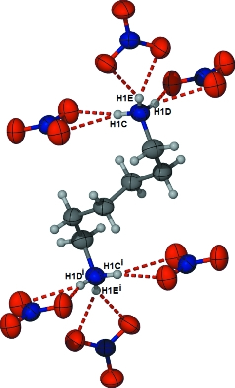 : Close-up view of (I) viewed down the a axis clearly showing the bifurcated hydrogen-bonding interactions. Hydrogen bonds are indicated by dashed lines.