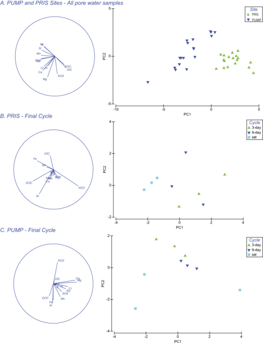 Principal Component Analysis of pore water geochemistry, showing eigenvector plots (left column) and PCA scatter plot (right column) for comparison between (A).All pore water samples collected in the pumping station site (PUMP) and pristine site (PRIS) over the course of the experiment; (B) Pore water samples collected in the pristine site (PRIS) at the end of the experiment (Final Cycle); (C) Pore water samples collected in the pumping station site (PUMP) at the end of the experiment (Final Cycle).