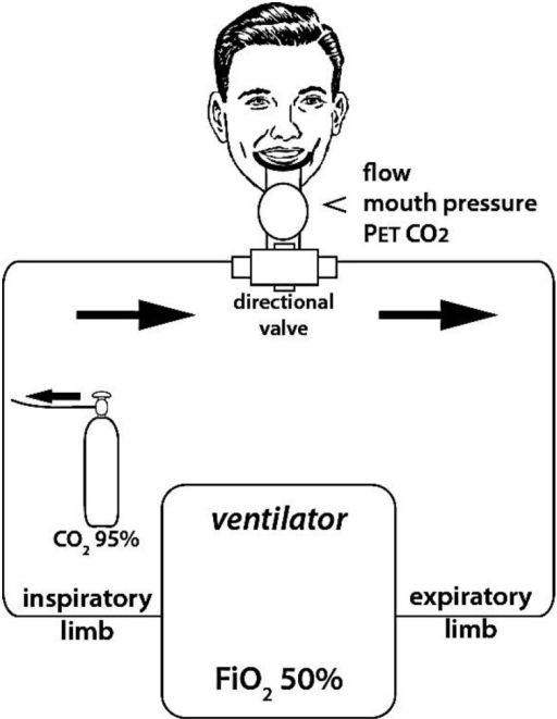 "Experimental set up used to induce experimental dyspnea. Dyspnea was induced by enriching the inspired gas in CO2 (i.e., increasing FiCO2) while hindering the ventilatory response to CO2 by controlling breathing with a ventilator (fixed tidal volume and respiratory rate, as determined during a preliminary training session to ensure passive ventilation of the subjects to be). FiCO2 was fine-tuned in order to maintain respiratory discomfort between 5 and 6 on a 10 cm ""respiratory discomfort"" visual analog scale (VAS). Flow, mouth pressure, and PetCO2 were monitored continuously during the session."