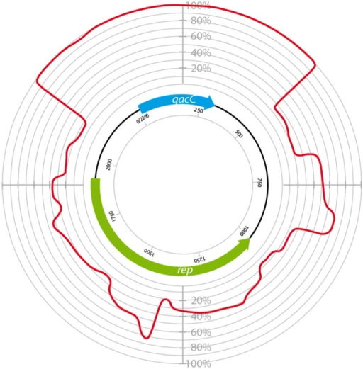 Circular homology plot based on the nucleotide alignment between QacC plasmids. The figure is based on an alignment after gap removal of pNVH99, pWBG754, pSA1308, pLUH01, pKH8, pSH4126, pPI-2, pSW49, pSK89, pWBG32, pSepCH, and pSM52, which were reopened for alignment at the start of qacC. The indicated length of rep is the average of the analyzed genes.