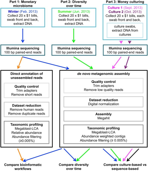 Flowchart describing the experimental plan and workflow for sample collection, sequencing and metagenomic data analysis.