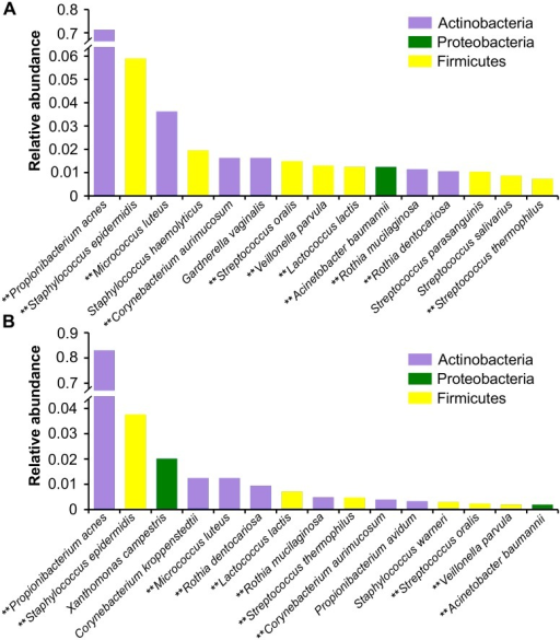 Relative abundance at the phylum and species level of bacterial taxa identified in the Winter and Summer 2013 datasets.Relative abundance of the top 15 bacterial taxa at the species level for (A) Winter and (B) Summer. The color of each species corresponds to its respective phylum. Those species marked with a ** indicate species present in the most abundant of both time points.