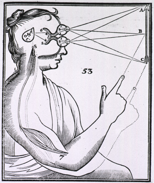 <p>Human figure, half-length, right profile; eyes represented above each other and focused on an arrow at right; lines extend from the eyes to the mid and terminal points of the arrow; also shown is portion of the brain responsible for automatic response.</p>