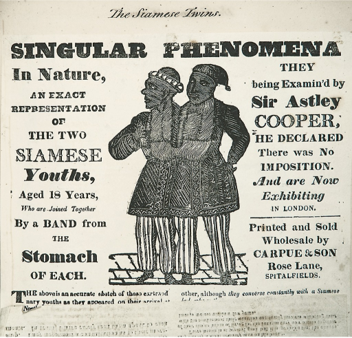 <p>One of the many posters, souvenir booklets, tickets for shows, letters, news clips, magazine articles, lithographs, political cartoons, and testimonials collected in the National Library of Medicine's Chang and Eng scrapbook, On the United Siamese Twins.</p>