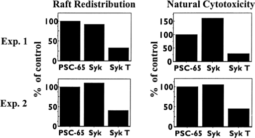 Expression of dominant negative, catalytically inactive Syk inhibits raft redistribution. Left panels: NK cells were infected for 4 h at a multiplicity of infection of 20 with control recombinant vaccinia viruses (PSC-65) or recombinant vaccinia encoding either wild-type Syk or catalytically inactive, truncated Syk (Syk T). Infected NK cells were stained with FITC–CTx and incubated with hydroethidine-labeled K562. NK–target conjugates were scored for raft redistribution. Right panels: infected NK cells were incubated with 51Cr-labeled K562 cells for 4 h. The two results shown are representative of five total experiments.