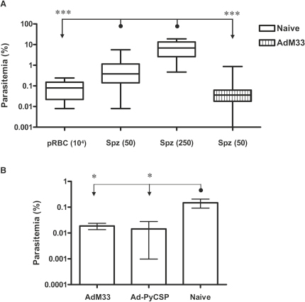 Blood-Stage Parasitemias in Naive and Immunized Mice 48 hr after Blood-Stage Infection(A) BALB/c mice immunized with AdM33 were challenged with 50 sporozoites (n = 18), or naive controls were challenged with 104 pRBCs (n = 29), 50 sporozoites (n = 44), or 250 sporozoites (n = 8). Blood-stage parasitemia ∼48 hr post blood-stage infection was assessed by microscopy (day 5 post spz challenge and day 2 post pRBC challenge). Data were pooled from multiple experiments. Plots show median values, 25th–75th percentiles, and range. One mouse in the AdM33 group had 0% parasitemia on day 5.(B) BALB/c mice were immunized with AdM33 or 1 × 108 vp AdHu5-PyCSP and challenged with 50 sporozoites 14 days later. The mean parasitemia ± SEM is shown (n = five or six mice per group). ∗p ≤ 0.05 and ∗∗∗ p ≤ 0.001, comparing between all groups by one-way ANOVA.