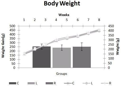 Change in body weight. Evolution of body weight and weight gain of rats during the experiment. Body weight was measured and registered once a week. C = Control; L = Light Soft Drink; R = Regular Soft Drink. n= 15 animals per group. * ≠ C. ‡ ≠ L