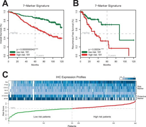 The Seven-Marker Signature and Survival of 362 Patients with Primary MM.Panels A and B show Kaplan-Meier estimates of overall and recurrence-free survival for high risk patients (red) and low risk patients (green) from the primary cohort according to the final seven-marker signature (Panels A, B). Equality in survival expectance of the subgroups is assessed by the log-rank test. The difference between high risk patients and low risk patients is highly significant (p<0.001) for the seven-marker signature. Panel C shows the IHC expression profiles of 362 tumor specimens from the primary cohort ordered by their predicted risk score. Each column represents an individual patient consisting of the expression values of the seven-marker signature (5 risk markers and 2 protective markers). The magnitude of the corresponding risk score is plotted below for 181 low risk patients (green) and 181 high risk patients (red). IHC expression values were scaled between 0 (light blue) and 1 (dark blue) for plotting only. White cells represent missing values (n.a.).