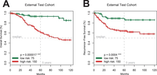 Validation of the Seven-Marker Signature and the FDR Marker Selection Procedure.Kaplan-Meier estimates of overall (Panel A) and recurrence-free survival (Panel B) for the independent external test cohort of 225 patients (TMA 2) confirm the predictive prognostic power of the signature (p<0.001).