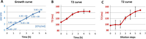 Iron dilution during cell growth determined by MRI. (A) Cell density and (B) transverse relaxation time (T2) of iron-labeled S. aureus samples at different time points of the growth curve. Cell cultures were labeled with 5-nm citrate coated IONPs (1 μmol Fe/ml for 108 cells). For MRI measurements bacterial samples at each time point were diluted to an initial cell concentration of OD 0.5 and were embedded in 500 μl 0.5% agarose. (C) T2 measurements of agarose embedded cell cultures labeled with different iron concentrations in a 1:2 dilution row: 1 μmol Fe/ml, 0.5 μmol Fe/ml, 0.25 μmol Fe/ml, 0.125 μmol Fe/ml, 0.063 μmol Fe/ml, 0.031 μmol Fe/ml, 0.016 μmol Fe/ml. 1:2 dilution steps of the initial iron concentration imitate the iron dilution caused by cell division cycles. Note that dilution step 5 in (C) corresponds with measurement at 3 h in (B).