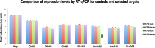 Validation of nanoCAGE data by qRT-PCR confirms that the expression levels of selected VRs in the MOE of young and adult mice are comparable to the expression levels of ORs genes with similar tag counts in nanoCAGE libraries. The qRT-PCR validation was performed in triplicates on RNA purified from the dissected MOE and VNO of P21 (males n = 5, females n = 5) and P50 (males n = 5, females n = 5) C57BL/6J mice. All primers used were designed in an exon-spanning fashion; the Ct values of each target were normalized on Gapdh Ct values. The expression levels in the VNO and the copy number calculation are shown in Supplementary Figure S3.