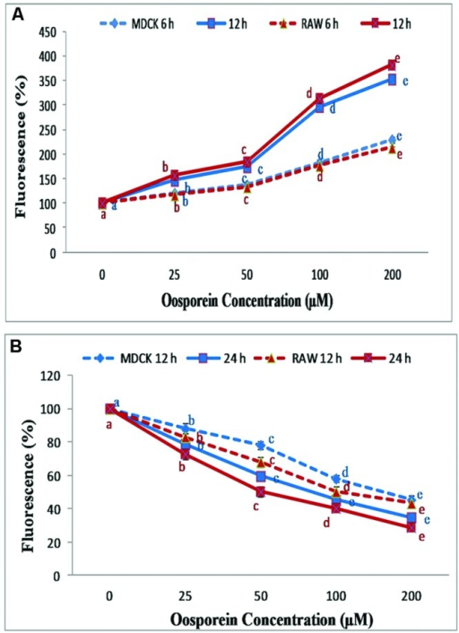 (A) Estimation of reactive oxygen species (ROS) production by DCFH-DA using spectrofluorimeter; (B) Dose dependent effect of oosporein on Mitochondrial membrane potential (MMP) in MDCK and RAW 264.7 celllines. Values represent mean ± SD of six parallel experiments. In the figure each series mean values followed by the different letter are significantly different according to DMRT at p < 0.05.