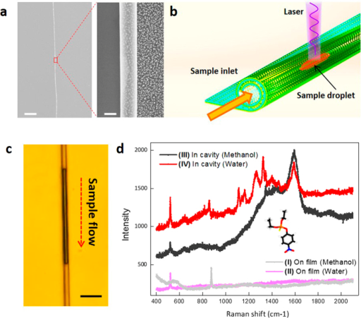 Small volume inspection of pesticide in the plasmon nanocavity.(a) A long and uniform rolled-up plasmon nanocavity. Scaler bars: left 10 μm; right 500 nm. (b) schematic illustration of the plasmon nanocavity working as an nanoscale optofluidic detector. (c) Microscopy image of small-volume pesticide solution pumped in the plasmon nanocavity. Scale bar is 3 μm. (d) Measured Raman spectra of parathion. Curve I, on flat Ag NP array using methanol as solvent; curve II, on flat Ag NP array using water as solvent; Curve III, in plasmon nanocavity using methanol as solvent; Curve IV, in plasmon nanocavity using water as solvent. Pesticide parathion concentration is 10−5 M.