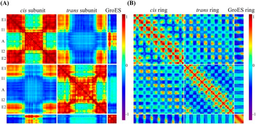 Cooperativity of residue motions using the first 15 lowest frequency modes of the coarse-grained ssNMA model.(A) The cooperativity within a single set of subunits: chain A from the cis ring, chain H from the trans ring, and chain O from GroES. (B) The cooperativity among all residue pairs in the GroEL/GroES complex.