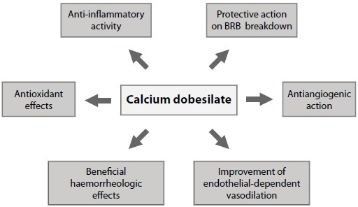 Multifaceted effects of calcium dobesilate in essential pathways involved in the pathogenesis of diabetic retinopathy. Abbreviation: BRB, blood-retinal barrier.