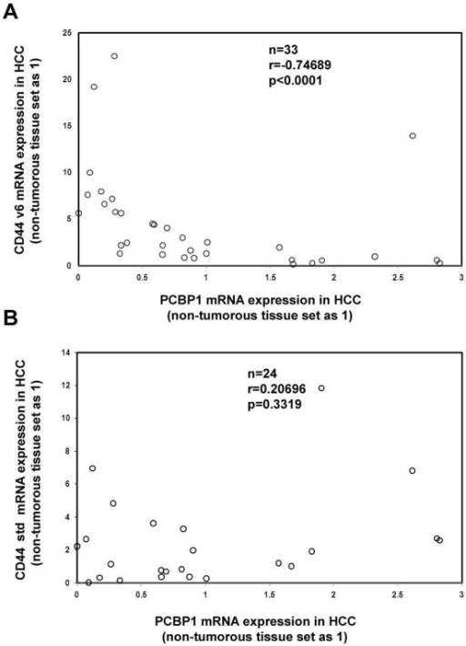 Negative Correlation of PCBP1 and CD44 v6 mRNA expression in HCC tissue samples analyzed. Total RNA was extracted from HCC specimens and their adjacent non-cancerous liver tissues for real-time PCR analysis. The expression levels of PCBP1, v6 and std in non-cancerous tissues were set to 1 and normalized to GAPDH mRNA. The experiments in each sample were performed in triplicate with at least 3 independent times. The data was shown as the average of these experiments. Then Spearman test was performed.